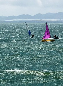 Bit Breezy, race day 30.04.17